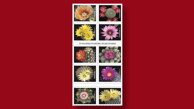 us-stamps-2019-cactus-flowers